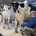 Coronavirus Hits Already Frail U.S. Farm Economy