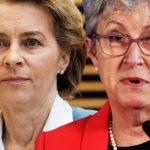EU at risk of collapse? Gisela Stuart unravels Brussels' key to surviv...